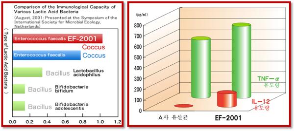 Lợi khuẩn Acid Lactic EF 2001