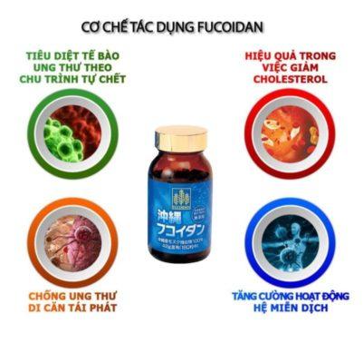 Cơ chế tác dụng Fucoidan okinawa