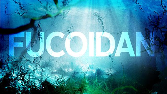 Fucoidan chữa trị ung thư dạ dày
